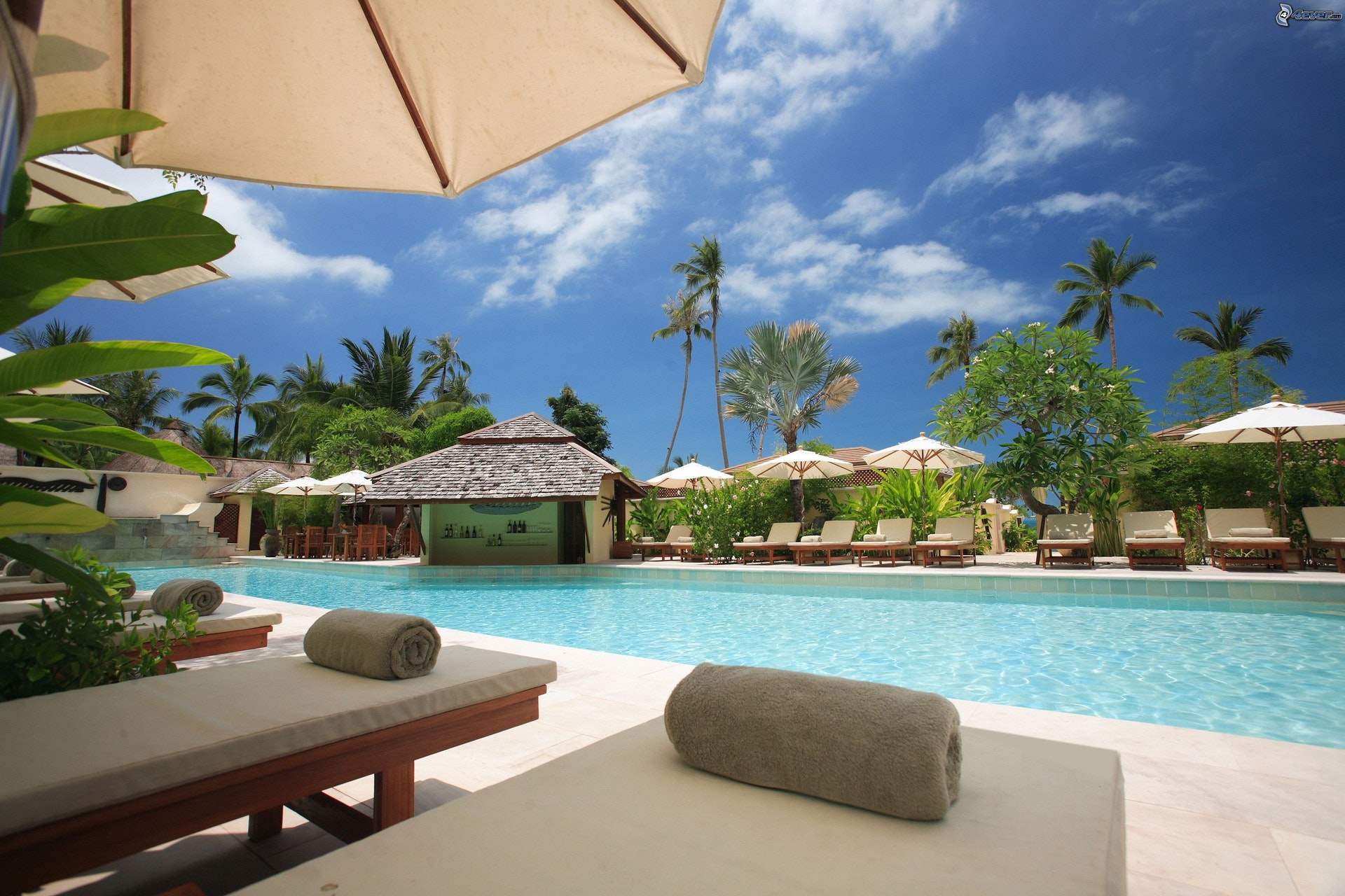Onyx Digital Marketing For Resorts